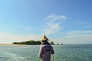 Rembang Regency - Shoreline with mangrove forest.