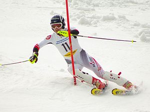 Ski pole - Note straight carbon-kevlar slalom poles with guards and small baskets