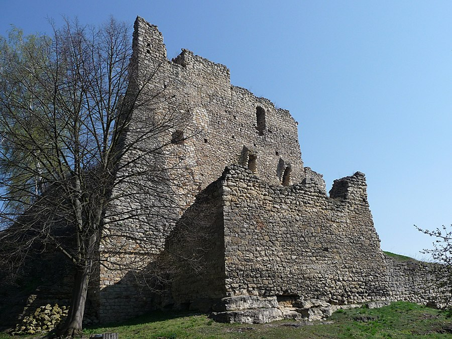 Michalovice Castle