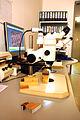 Mikroskopie-mpaew-aufsicht.jpg