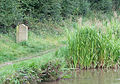 Milestone and Reeds, Macclesfield Canal, Cheshire - geograph.org.uk - 576284.jpg