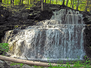Milford Township, Pike County, Pennsylvania - Savantine Creek Falls in the Delaware State Forest