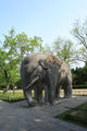 MingXiaoling Animal Elephant 02.jpg
