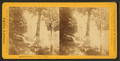 Minne-ha-ha, (laughing water), from Robert N. Dennis collection of stereoscopic views.png