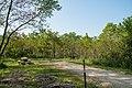 Minneiska Campground - Campsite at Whitewater State Park, Minnesota (42034802702).jpg