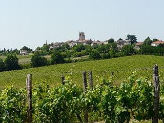 Montagnac-sur-Auvignon Commune in Nouvelle-Aquitaine, France