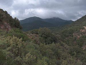 Assemini - View of Monte Lattias in the territory of Assemini.