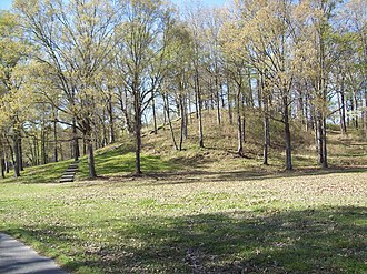 Poverty Point - Mound A at Poverty Point (before the trees were removed)