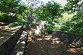 Mount Airy Arboretum - DSC03861.JPG