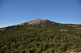 Mount Monadnock as seen from Bald Rock.jpg
