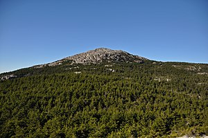Mount Monadnock - The summit of Mount Monadnock