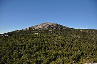 Mount Monadnock - The summit of Mount Monadnock