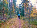 Mountain unicyclist in Finland.jpg