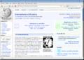 Mozilla Firefox 3 Beta 5.png
