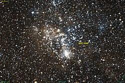 NGC 1948 DSS.jpg