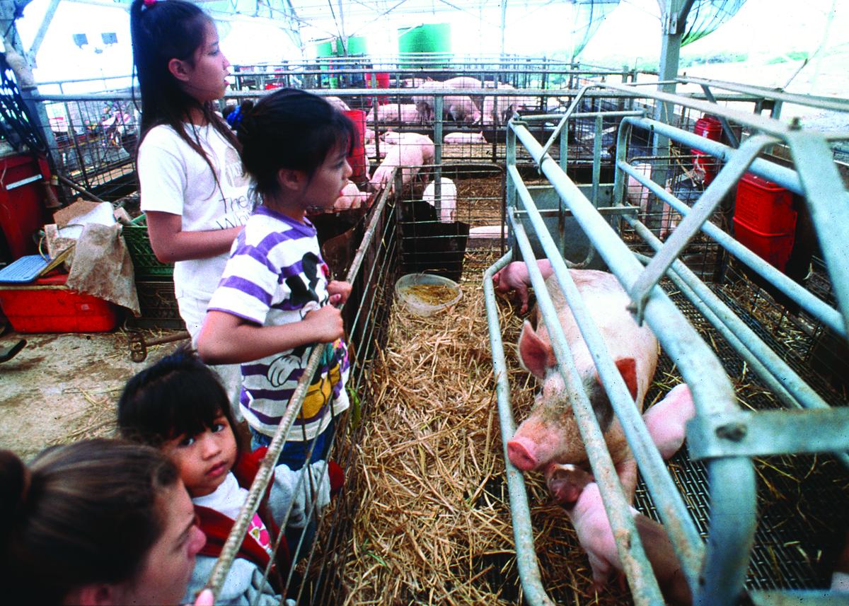 Girl slurry Female farmers