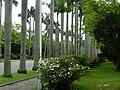 NTU Royal Palm Boulevard 20140402.jpg