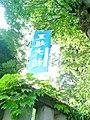 Nagoshi-no Ō-harae -TokorozawaShinmei-sha.jpg