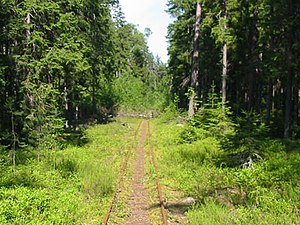 Narrow-gauge railways in Estonia - A surviving narrow-gauge railway on Naissaar island