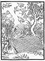 Narrenschiff (Brant) 1499 pic 0040.jpg