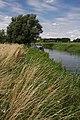 Narrowboat on River Lark near Isleham - geograph.org.uk - 1426140.jpg