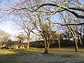 Nathan Tufts Park - Somerville, MA - DSC04334.JPG