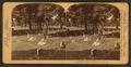 National Cemetery, Arlington, Va., U.S.A, by Jarvis, J. F. (John F.), b. 1850.png