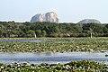 Natural water bodies at Yala.jpg