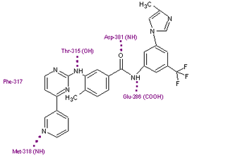 Bcr-Abl tyrosine-kinase inhibitor - Nilotinib in its binding site