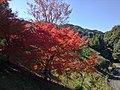 Nonaka, Taki, Taki District, Mie Prefecture 519-2166, Japan - panoramio.jpg