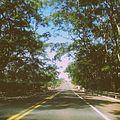 O caminho para o paraíso.jpg