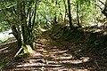 Oakford, old track - geograph.org.uk - 247685.jpg