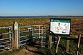 Oare Marshes - geograph.org.uk - 362116.jpg