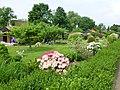 Oberhausen – Rechenacker - Kleingartenanlage am 1. Mai 2014 – - panoramio (6).jpg