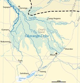 Okavango Delta river delta