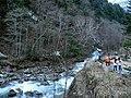 Okuhida Onsengo Hirayu, Takayama, Gifu Prefecture 506-1433, Japan - panoramio (1).jpg