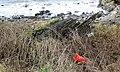 Old boat remains, Carleton Port, Lendalfoot, South Ayrshire.jpg