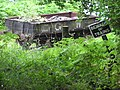 On the edge of the woods by Parkend Station - Aug 2011 - panoramio.jpg