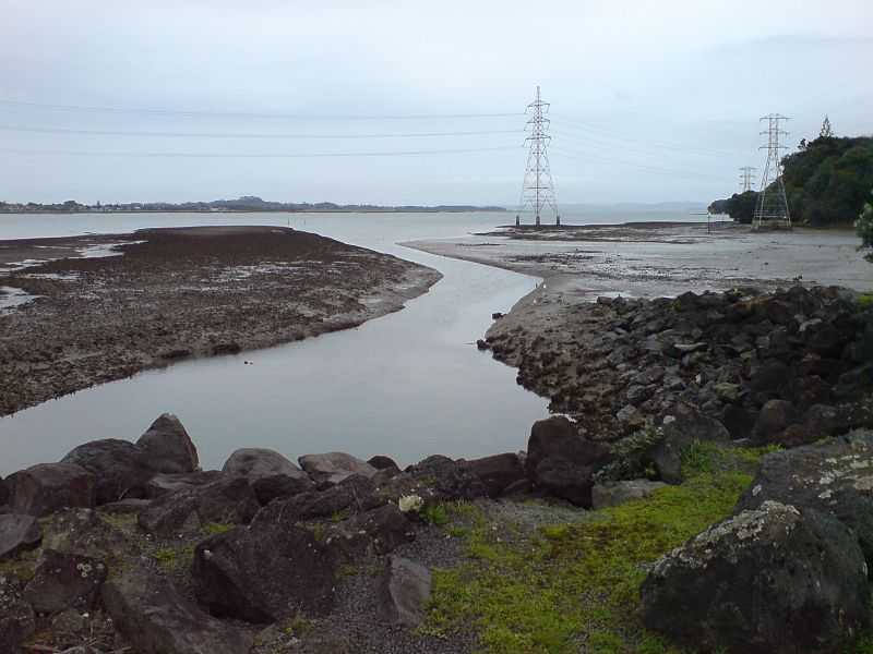 File:Onehunga Shoreline For Reclamation.jpg