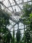Osnabrück - Botanischer Garten - Tropenhaus - Innenansicht -BT- 01.jpg