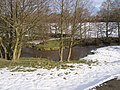 Oxbow bend in the River Alyn - geograph.org.uk - 341978.jpg