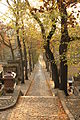 Père-Lachaise - Avenue latérale du Nord 01.jpg