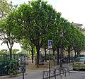 P1320566 Paris IV jardin Roger-Priou-Valjean rwk.jpg