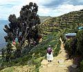 PATH-Isla del Sol-Titicaca-Bolivia.jpg