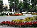 PL - Mielec - park behind Municipal Public Library - Kroton 002.JPG