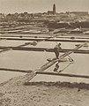 Paludier au travail près de Batz-sur-Mer (1939).jpg