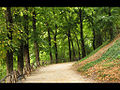 Parco Ranghisci Brancaleoni - Gubbio - panoramio.jpg