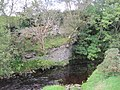 Park Burn with Cliff (2).jpg