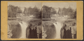 Passaic Falls, Paterson, N.J, from Robert N. Dennis collection of stereoscopic views.png