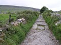 Path to Maeve's Grave - geograph.org.uk - 824501.jpg